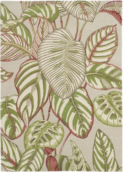 Kurzflor Designer Teppich Sanderson Calathea 050807 Olive beige grün multicolor
