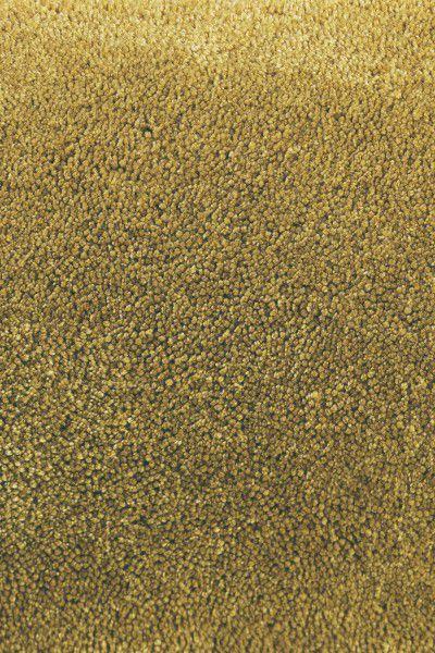 Kurzflor Designer Teppich Brink & Campman Twinset Uni Cut 21506 gelb